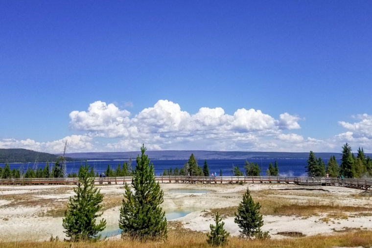 Image of Yellowstone Geysers